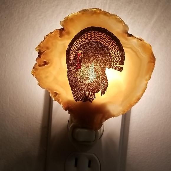 Wild Turkey agate wall night light